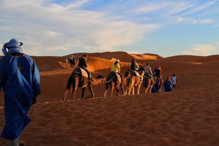 paseo_camello_marrakech_ok3