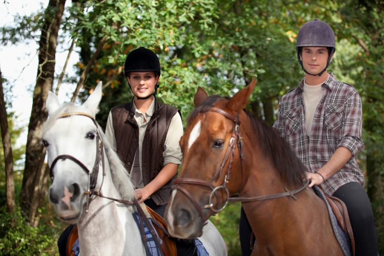 caballo_malta_ok1