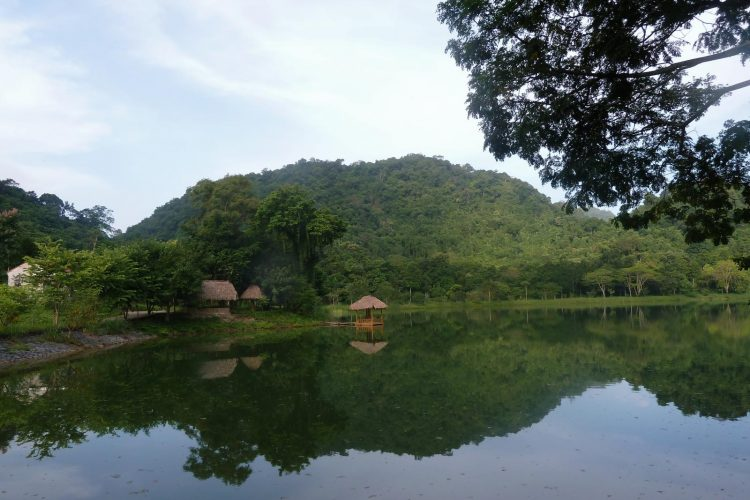Cuc-Phuong