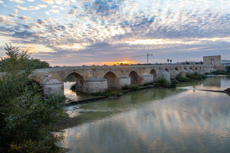 tapas-Córdoba2