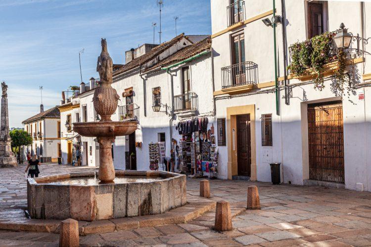 tapas-Córdoba4