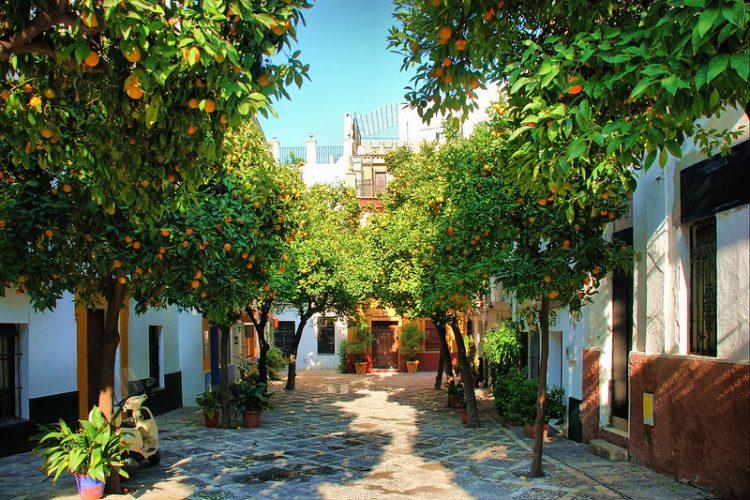 Paseo Sevilla (2)