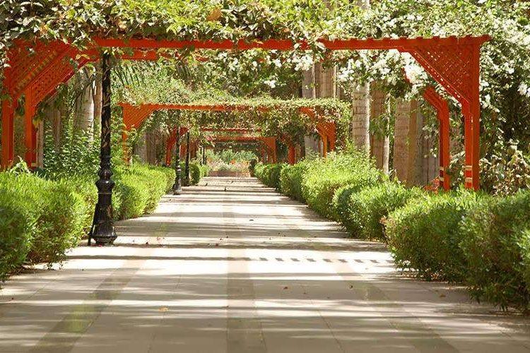 isla-Kitchener-jardin-botanico-asuan-ok3